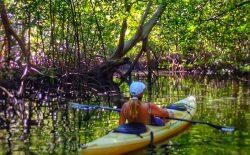 Andar en Kayak por canales de manglares en la Bahia de Jiquilico es fabuloso